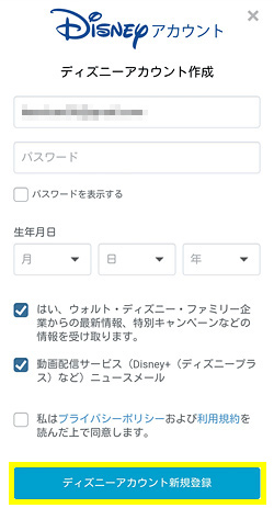 disney-plus-registration-013
